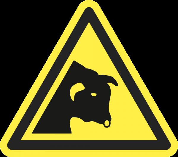 Warnung vor Stier ISO 7010-W034